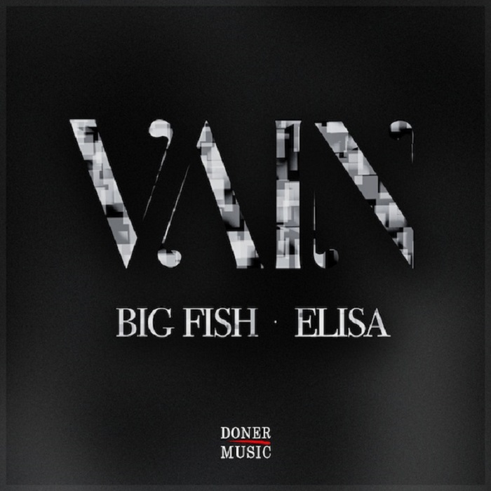 Big Fish feat. Elisa - Vain